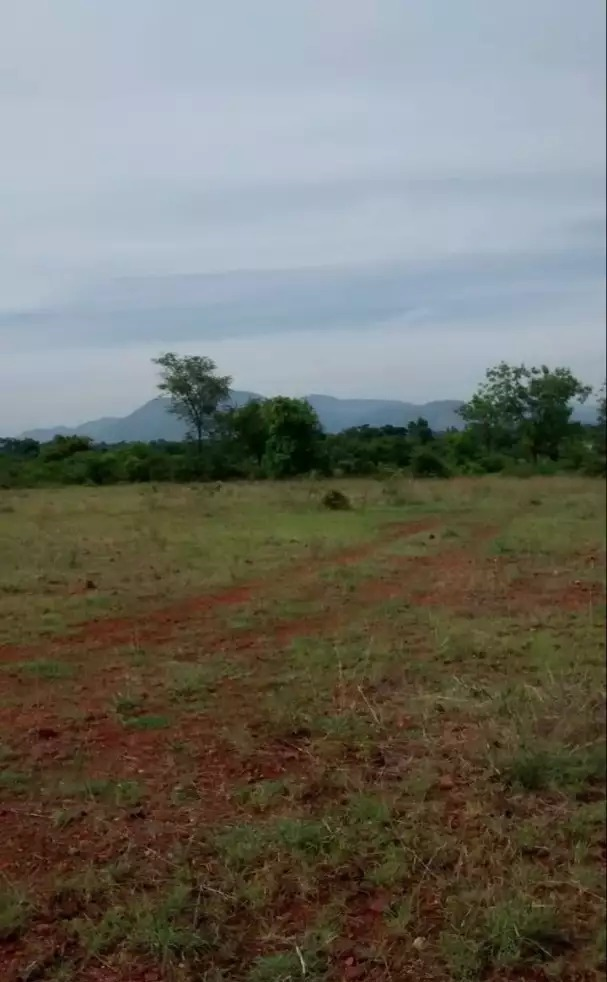 COMMERCIAL PLOT FOR SALE IN JAYANAGAR
